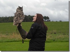 Otto the Eagle Owl