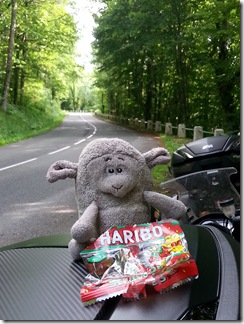 Haribo stop with Settle