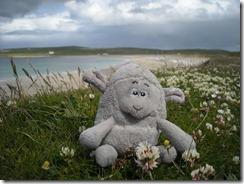 Settle at Skara Brae
